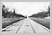 Broadway Avenue looking west. 1900 02-112 Tribune Pictures UofM Special Archives